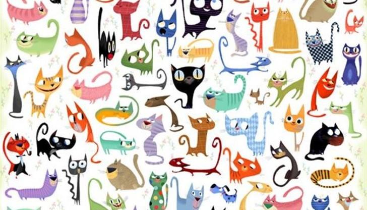 Найдите картинке кошку